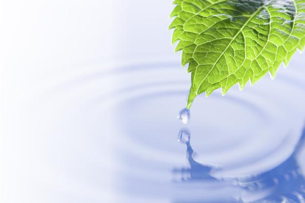 priroda voda ciscenje